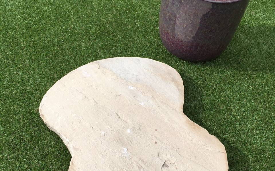 Mint Fossil Sandstone Stepping Stones